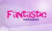 Fantastic Handbag